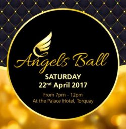The Angels Ball